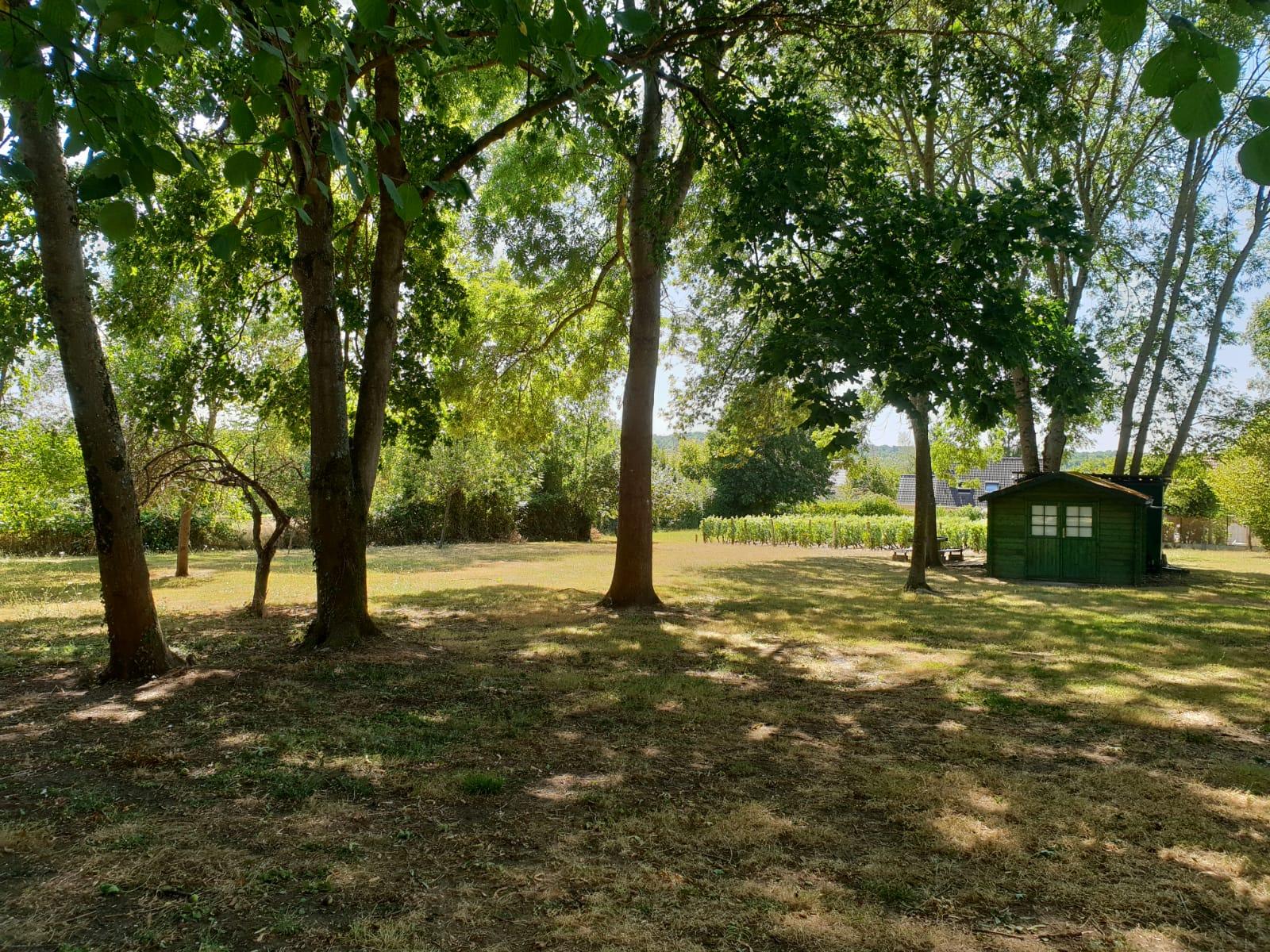 C'est au coeur du village, dans un espace partiellement boisé, que se développera le projet des Pierrottes